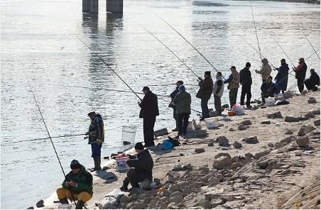 074-Novi-Sad-vissers-bij-Donau