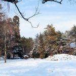 wit als sneeuw